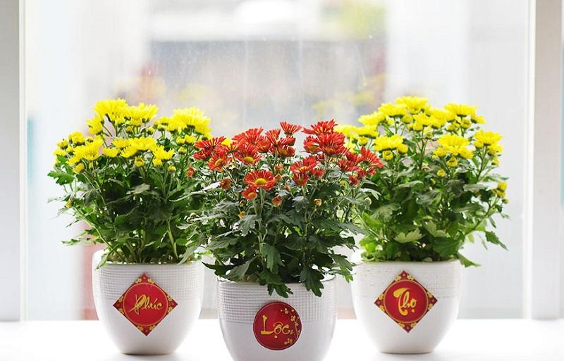 Xu hướng cắm hoa đẹp, đơn giản đón Tết Tân Sửu 2021